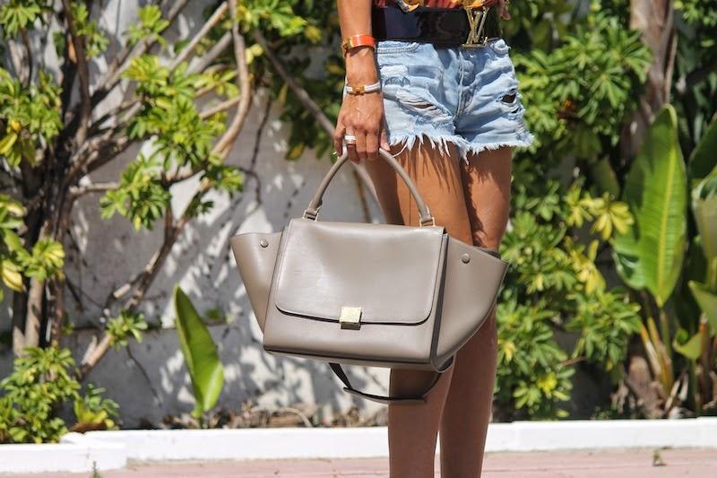 celine_louisvuitton_fashion